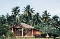 Bungalow hut accommodation in Kerala